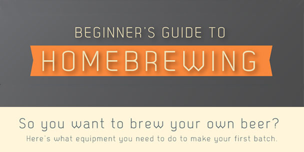 INFOGRAPHIC: A Beginner's Guide to Homebrewing