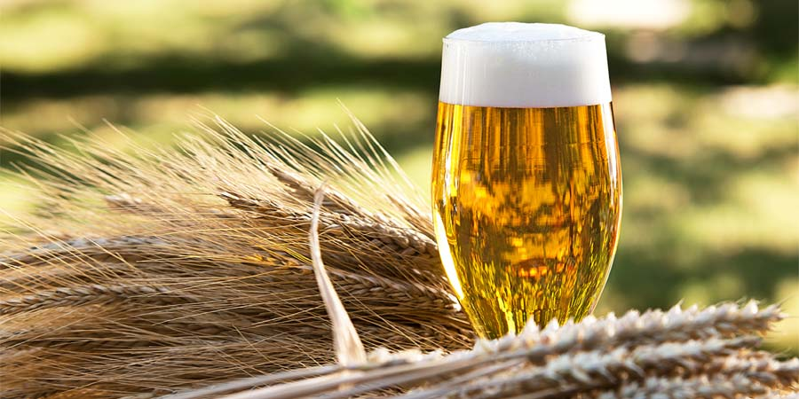 Single Malt Brewing: How to Brew With Only One Malt